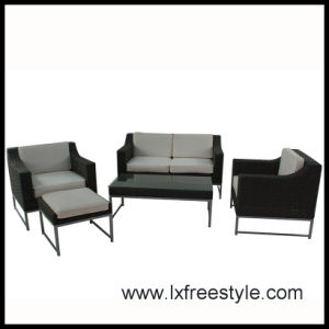 2014 SGS Pass Wicker Furniture / Outdoor Furniture (SF-007)
