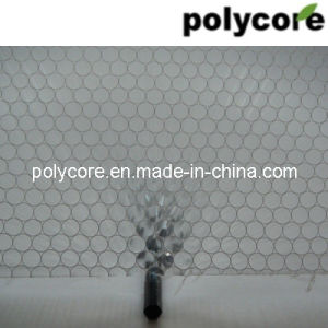 Clear Honeycomb PC6.0 pictures & photos