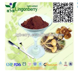 China Maca Extract Macamides0 6% Maca Root Extract Men Health Maca