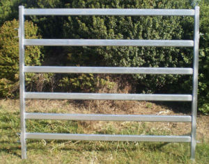 Australia Hot Dipped Galvanized Cattle Panels Porducts