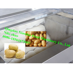 High Capacity Potato/Onion Washing and Peeling Machine pictures & photos