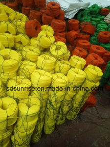 Professional PE Twisted Rope Supplier pictures & photos