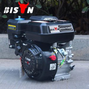 Bison Single Cylinder Ohv Structure Gasoline Engine for Hot Sale pictures & photos