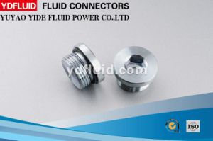 Hexagon Head Male Thread Hydraulic Carbon Steel Fitting Plug pictures & photos