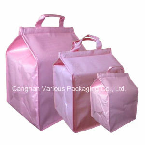 Insulated Cooler Bag for Cakes, Picnic Cooler Bag (BG2059) pictures & photos