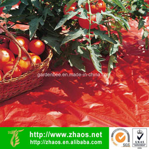 Red Mulch Garden Film Tomato Film Embossed Polyethylene Sheeting pictures & photos