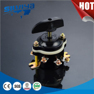 Rotary Switch for Russian Market pictures & photos