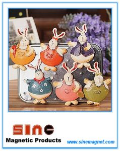 Resin Rabbit Fridge Magnets/Magnetic Sticker for Refrigerator pictures & photos