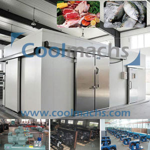 Cold Room for Food Storage or Raw Material Storage pictures & photos