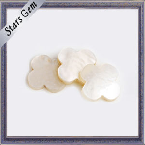 Natural White Beautiful Flower Shape Shell for Jewelry pictures & photos
