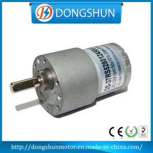 Ds-37RS528 37mm 6V 12V 24V DC Geared Motor