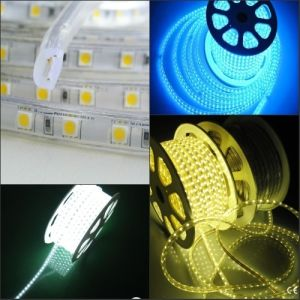 High Voltage Flexible LED Strip Lighting 5050/5630/3528 LED Strip Light pictures & photos
