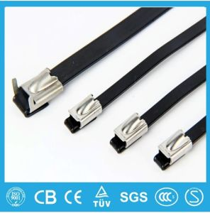 PVC and PPA Coated Stainless Steel Cable Ties pictures & photos