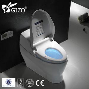 Stupendous Bathroom Ceramic Sanitary Ware One Piece Electronic Wc Toilet Bidet Machost Co Dining Chair Design Ideas Machostcouk