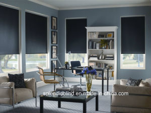Roller Fabric Blinds Windows Fashion Blinds Unique Blinds