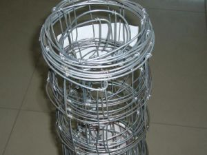 Durable Hot DIP Galvanized Farm Fence/ Field Fence pictures & photos