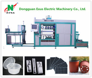 Plastic Blister Lunch Box Vacuum Forming Machine