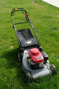Ant196 Lawn Mower with Petrol Power