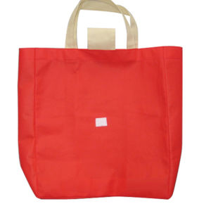 Foldable Non-Woven Shopping Bag (TL019) pictures & photos