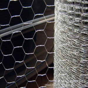 Hot Sale Hexagonal Wire Mesh / Chicken Wire Mesh / Bird Wire Mesh Yaqi Sell pictures & photos
