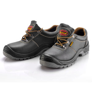 0eca40a2740 Steel Safety Shoes, Best Safety Shoe Brand, Shoe Safety