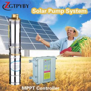 Solar Pump DC Powered Submersible Power Water System Irrigation Pumps