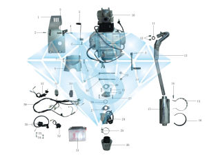 Engine & Wiring Assembly (HN110GY-5B)