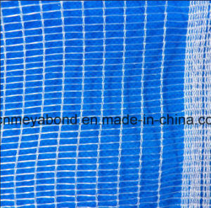Anti Hail Plastic Mesh Net for Protect Fruit Tree pictures & photos