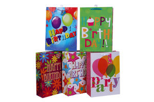 Dollar General Dollar Tree Gift Paper Bags Party Products Bags pictures & photos
