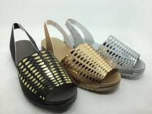 Lady Fashion Jelly Sandals Shoes Hot Wholesale