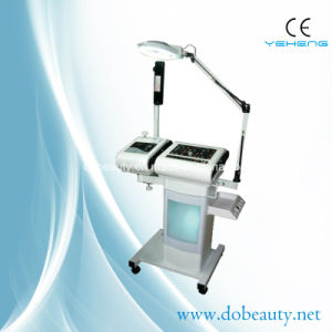 Hospital Skin Anti Aging Facial Steamer Ultrasonic Multifunction Equipment (BU-1201)