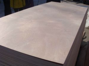 High Quality Bintangor Plywood/Commercial Plywood with Good Price From China pictures & photos
