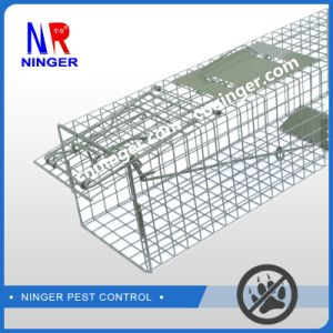 China Animal Trap, Animal Trap Wholesale, Manufacturers