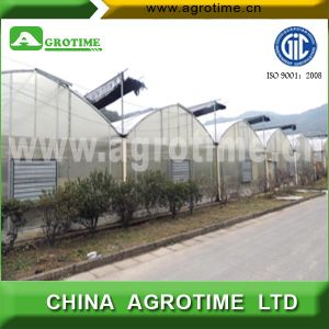 Greenhouses for Agriculture (CMA1080)