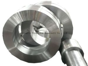 Stainless Steel Forging Ring and Shaft pictures & photos