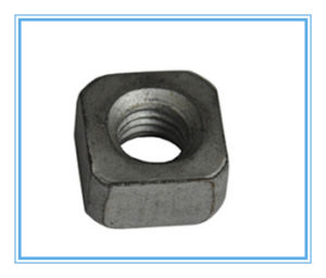 DIN557/ JIS1163 /Hot Galvanized Square Nuts pictures & photos