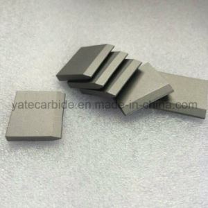 Tungsten Carbide Tip for SDS Chisel pictures & photos