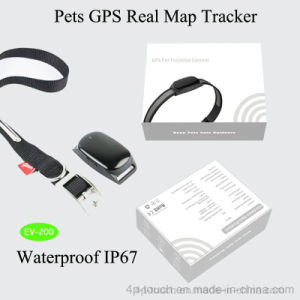 Mini Portable Pet GPS Tracker with Best GPS Accuracy EV-200 pictures & photos