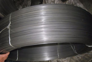 Excellent Straightness Ss Wire Rope pictures & photos
