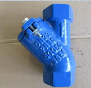 Screwed Ball Check Valve Pn16 pictures & photos