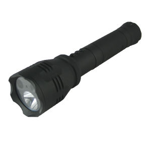 Multi-Function Torch Camera IP65 Waterproof pictures & photos