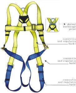 China Construction Safety Belt Ft Sb2 Full Body Safety