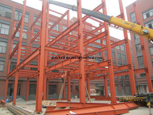 Professional in Standard Steel Warehouse and Workshop for Your Investment