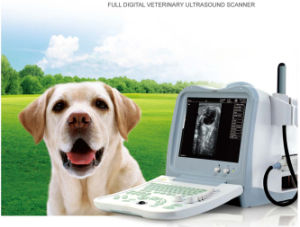 Hot Selling CE and FDA Approved USB Ultrasound Device pictures & photos