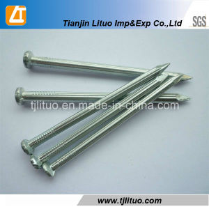 Good Quality at Low Price 45c Steel Concrete Nails pictures & photos