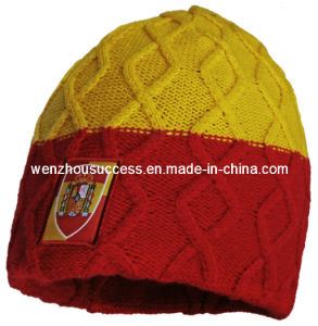 Knitted Beanie Hat (SS12-CK102) pictures & photos