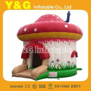 Bouncer Inflatable (GB313)
