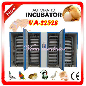 Compeitive Price Fully Automatic Chicken Large Egg Incubator (VA-22528) pictures & photos