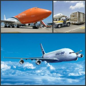 Air Cargo/Air Services/Air Shipping Company to Abuja, Lagos Nigeria pictures & photos