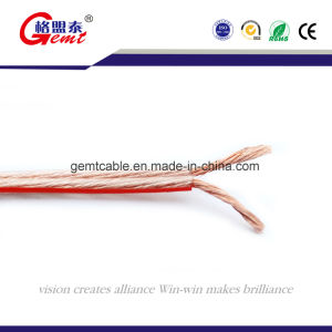Professional Manufactural in Resistant Audio Cable pictures & photos